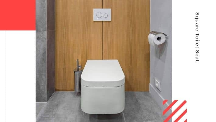 Square Toilet Seat UK 2021 — According to Experts