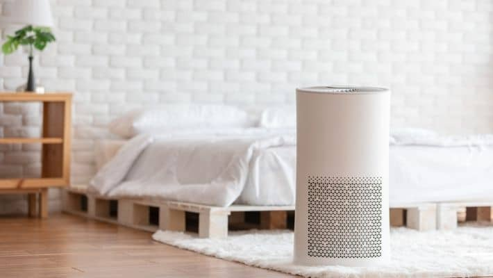 Do Air Purifiers Actually Work?