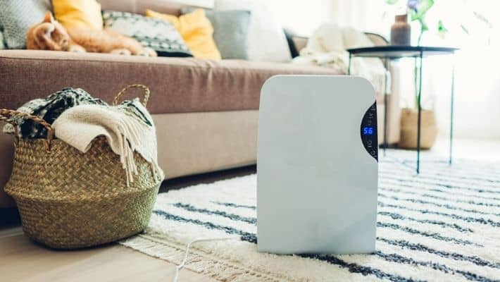 Do Air Purifiers Work For Allergies?
