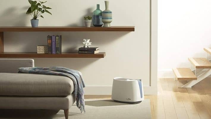 What You Should Know About Humidifiers?