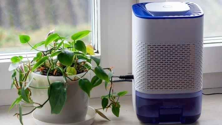 How Does A Dehumidifier Work?