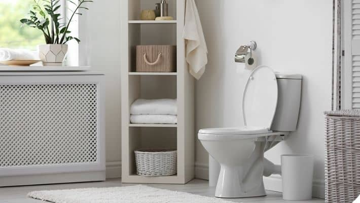 What You Should Consider Before Buying A Toilet?